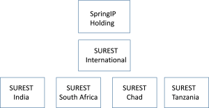 organisatie struct