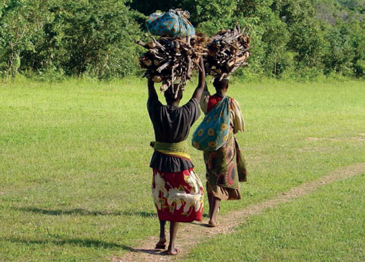 women_collecting_fire_wood