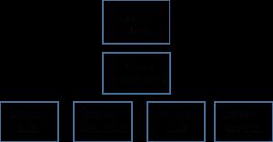 organisatie-struct-1024x535